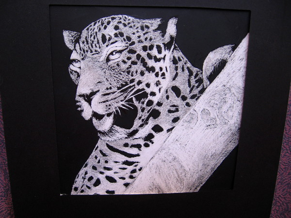 Dangerous Spots, Maryam Ablahad, scratchboard. Valhalla High School.