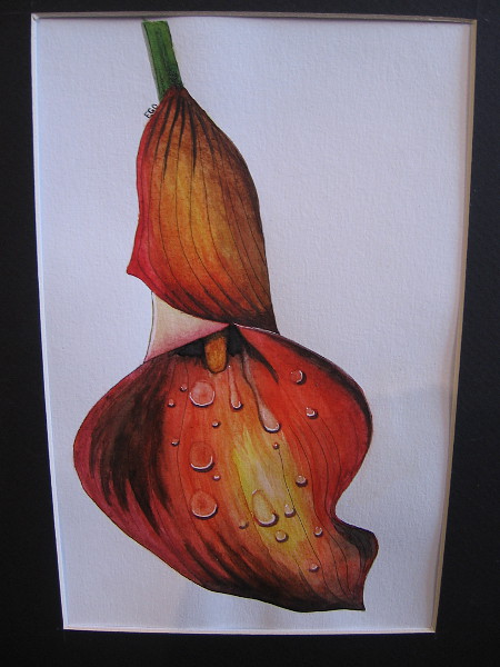 Dripping Lily, Evelyn DuVall, watercolor and ink. IDEA Center High School.