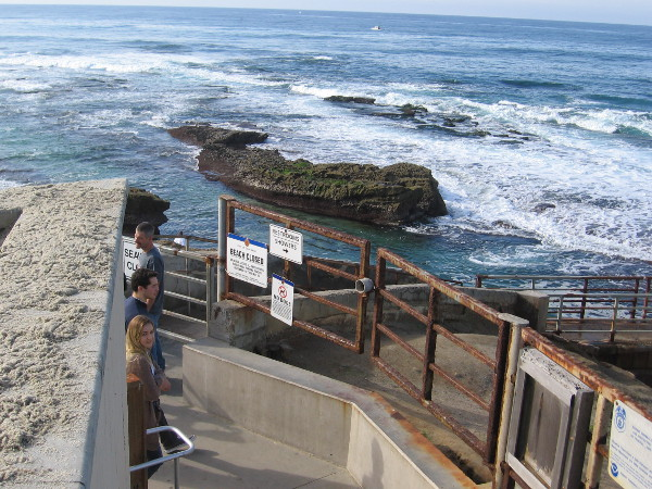 Looking west from the closed Children's Pool toward the broad Pacific Ocean and gently breaking waves.