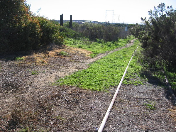 Old railroad tracks run along the west edge of Paradise Marsh.