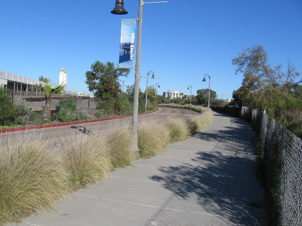 Looking back north along the Paradise Creek Trail, between Paradise Marsh and the National City Cement Terminal.
