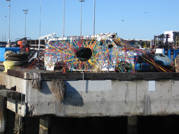 Now that's something you don't see every day! Under Wraps is colorful public art that adds character to National City.