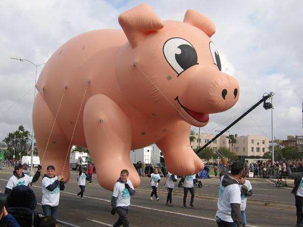 It's Hog Heaven!