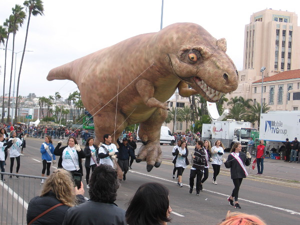 Yikes! Here comes the scariest Holiday Bowl Parade balloon of them all! Tessa the T-Rex!