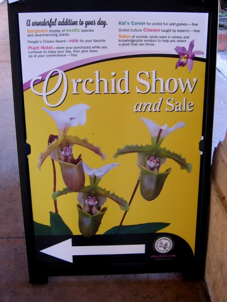 The San Diego County Orchid Society had their Winter Show and Sale in Balboa Park's Casa del Prado this weekend!