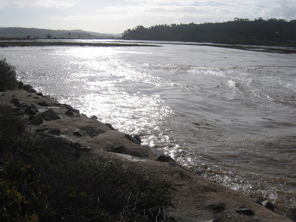 Looking west along Los Peñasquitos Lagoon. Light shines on a sheet of water swollen by high tide.