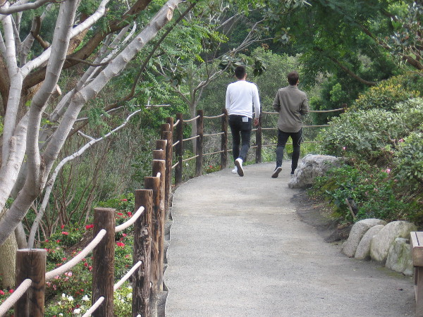 Meanwhile, folks walk through the always beautiful Japanese Friendship Garden.