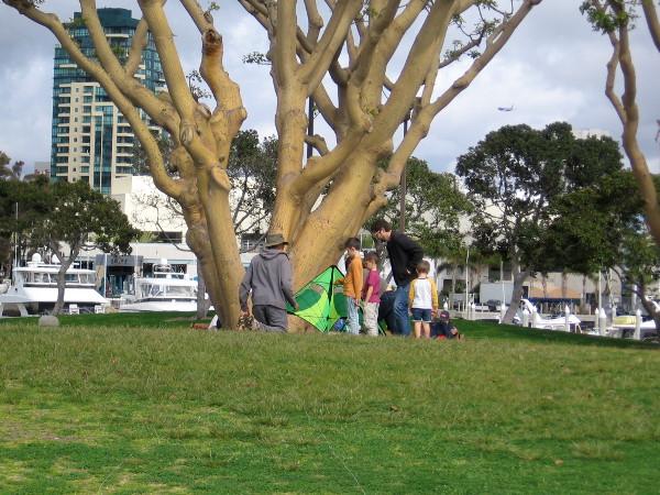 Kids examine a kite near a tree at Embarcadero Marina Park North.