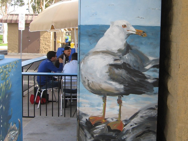 A large gull near diners at Burgers, Bait and Beer.