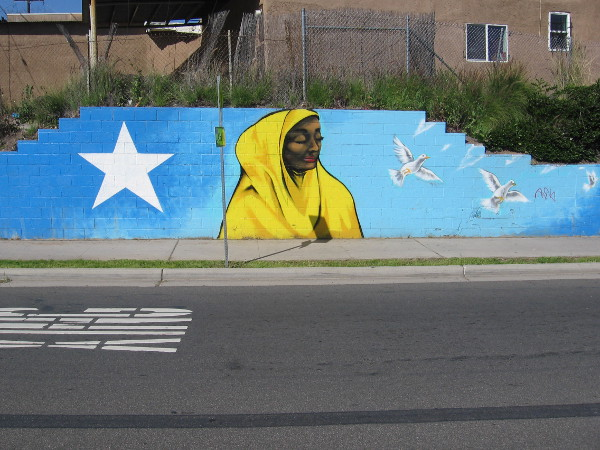Left end of a long mural on University Avenue near 50th Street. It faces a new park-like community gathering place across University. Created by @illumihaadi and local youth, with support from City Heights CDC and City Heights Business Association. The neighborhood is home to many Somalis.