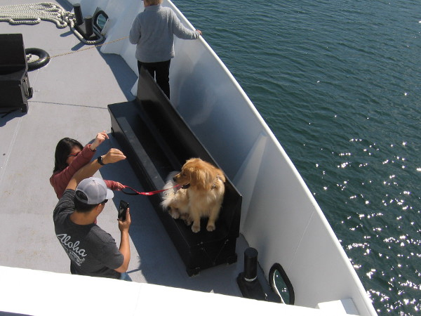 A dog and two friends enjoy Pet Day on the Bay aboard the Adventure Hornblower.