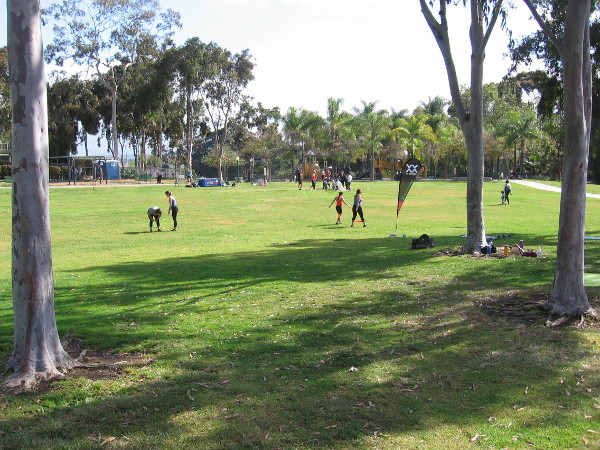 Another sunny San Diego day as people recreate on the grass.