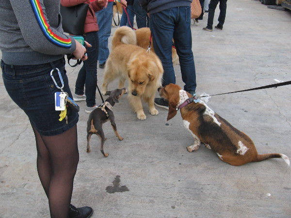Some of the passengers have a pre-boarding meet and greet.