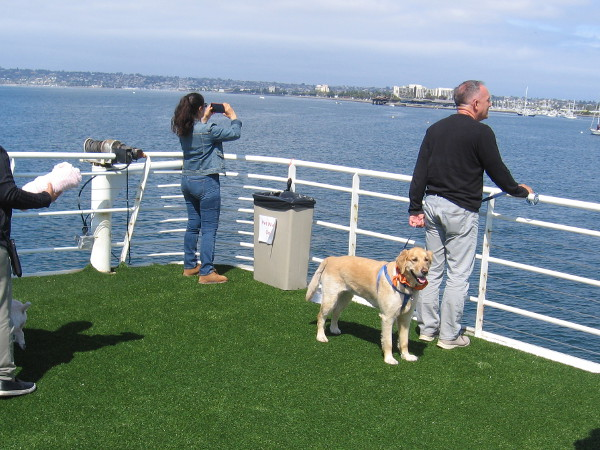 Some dog-friendly turf and great views await the pooch passengers.