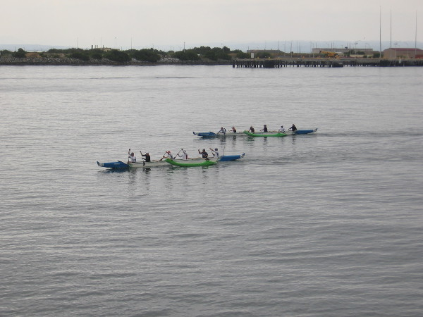 Some people rowing outrigger canoes flew past us on the calm water of San Diego Bay.