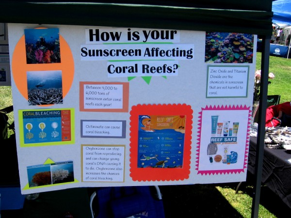 I learned from some Girl Scouts that chemicals in certain sunscreens harm coral reefs. Safe active ingredients are Zinc Oxide and Titanium Dioxide.