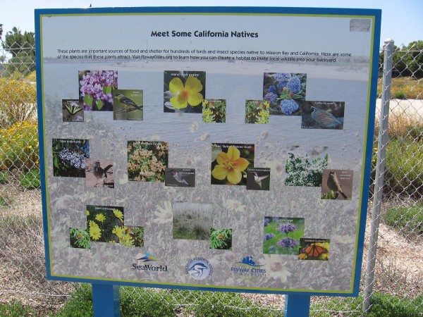 One sign displays plants that provide food and shelter for the birds and insects of Mission Bay.