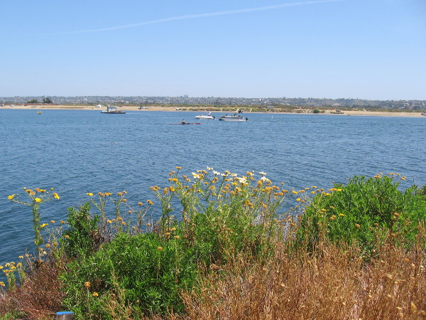 Looking north across the water at boats, kayaks and Fiesta Island.