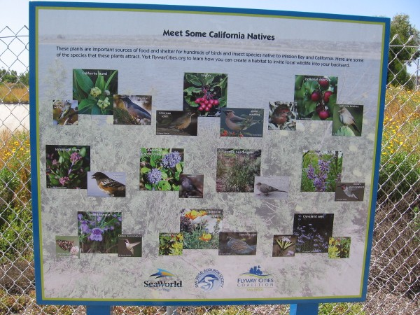Another sign with more California natives, including plants and birds.