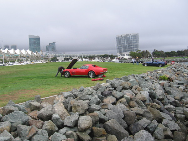 A few cars remain parked on the grass of Embarcadero Marina Park North.