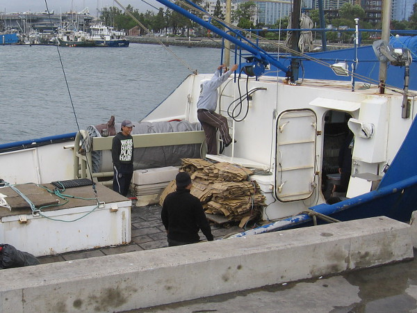 Some fishermen docked at the pier are busy working. A little rain is just water.
