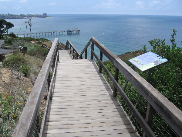 Starting along a raised wooden walkway with amazing views of the Pacific Ocean.