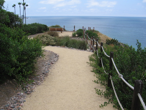 Walking along on a beautiful, sunny San Diego day.