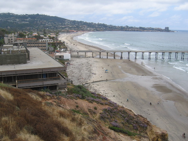 Beyond Scripps Pier and Scripps Beach is La Jolla Shores and the Village of La Jolla.