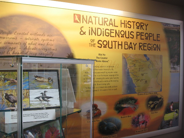 In addition to displays about birds, fish, wildlife and plants, the exhibit explores the history of indigenous people in the South Bay region.