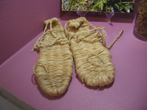 The Kumeyaay made sandals, nets and rope from the fibers of Coastal Agave and Yuccas.