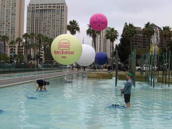 Early Thursday morning, guys are wading in the Childrens Park fountain putting up some cool Animation Domination balloons.