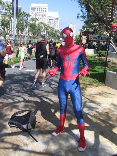 Spider-Man cosplay.