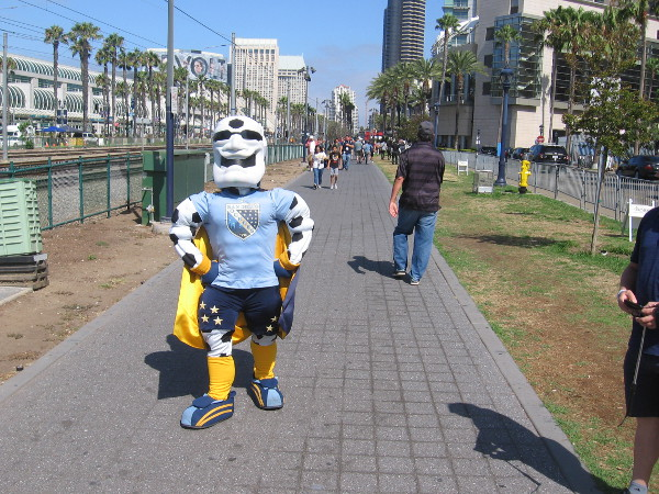 It's Sunny, mascot of the San Diego Sockers! Not sure if this is considered cosplay, but whatever.