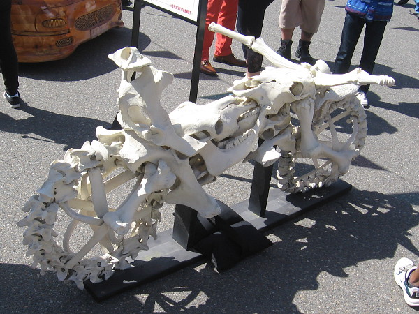 Bad to the Bone is a one-of-a-kind motorcycle made of animal bones from dead cows and road kill.