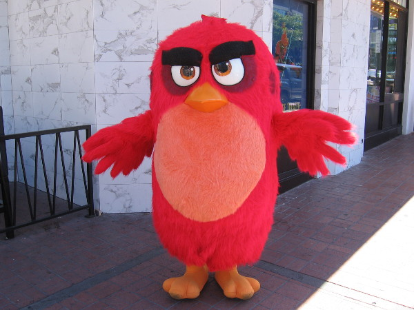 And this Angry Bird!