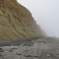 A walk in fog along Torrey Pines State Beach.
