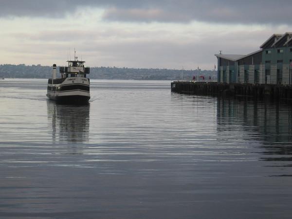 Here come Cabrillo, the Coronado Ferry, across a very smooth San Diego Bay.