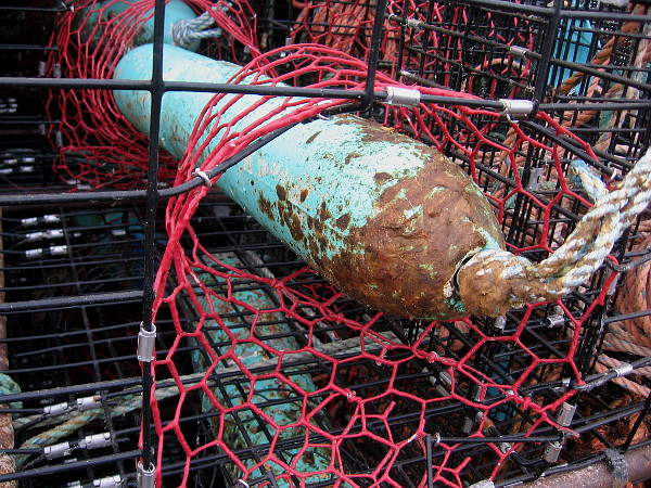 Some colorful lobster traps were stacked at the edge of the parking lot beside Tuna Harbor.