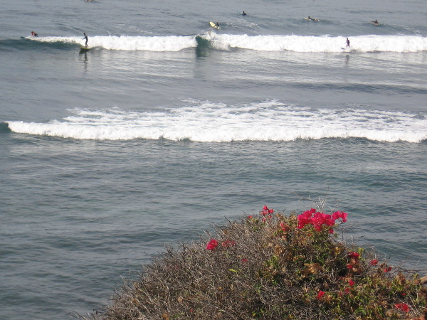 My small camera catches some distant surfing action.