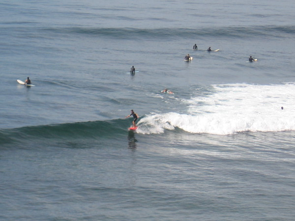 Many surfers were out on a sunny September day, enjoying good conditions.