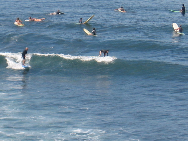 I saw hundreds of surfers out in the water during my walk. Looks like fun!