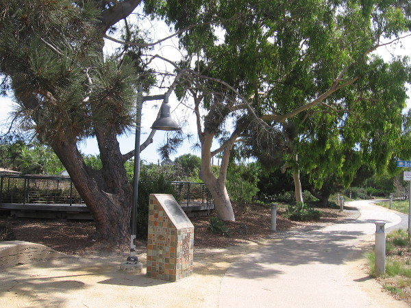 A monument with a plaque stands in a small grove of Torrey Pine trees.