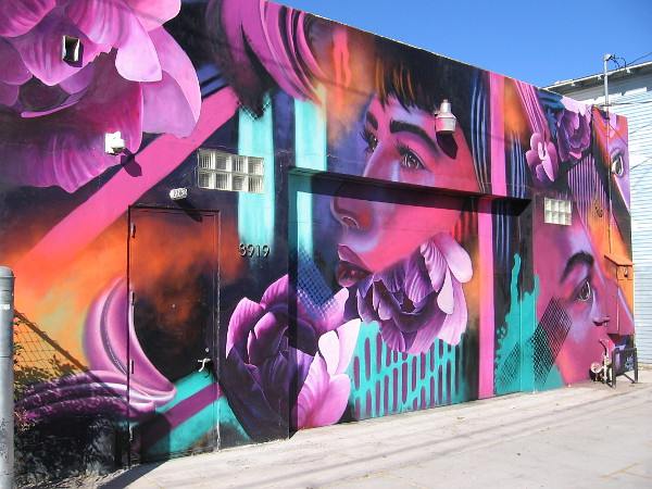 North Park alley mural by @kyraaart.