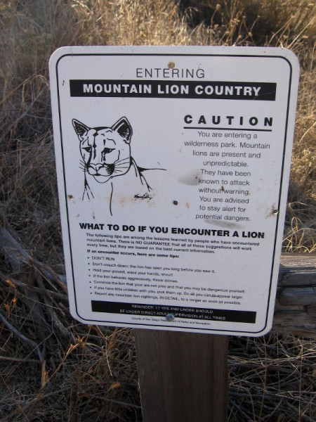This is mountain lion country. A sign describes what to do should you encounter one.