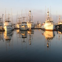 Quiet morning reflection by Tuna Harbor.