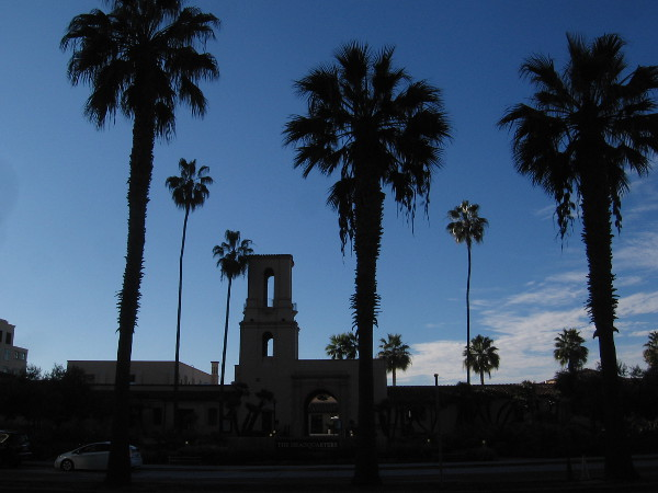 Across Harbor Drive is The Headquarters and palm trees.