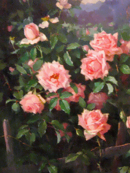 Edith Whilte, Roses on a Fence, c. 1915. Oil on canvas. Close-up photo of a beautiful painting created in Lomaland.