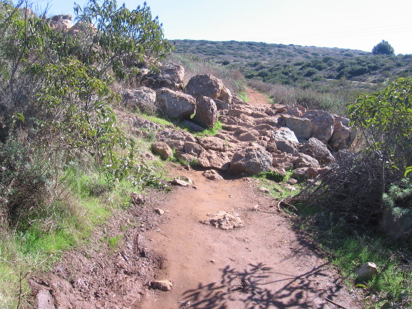 A section of very rocky trail.