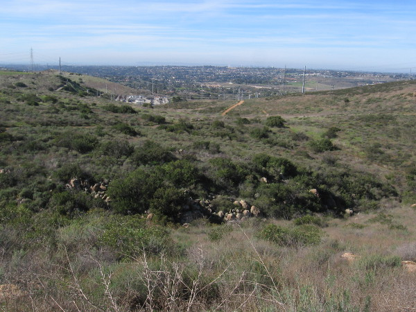 Looking down after climbing for a bit. I could see downtown San Diego and Point Loma in the far distance.