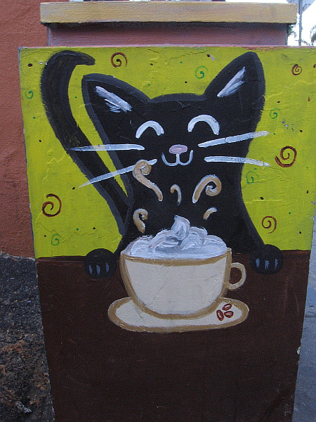 This black cat likes drinking lattes.